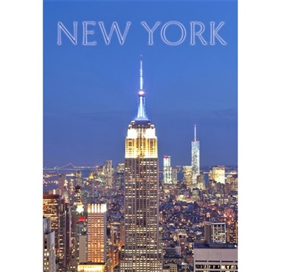 Empire State Building Magnet #5