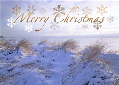 Peconic Bay Christmas Cards
